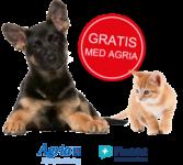 Agria + FirstVet = sant